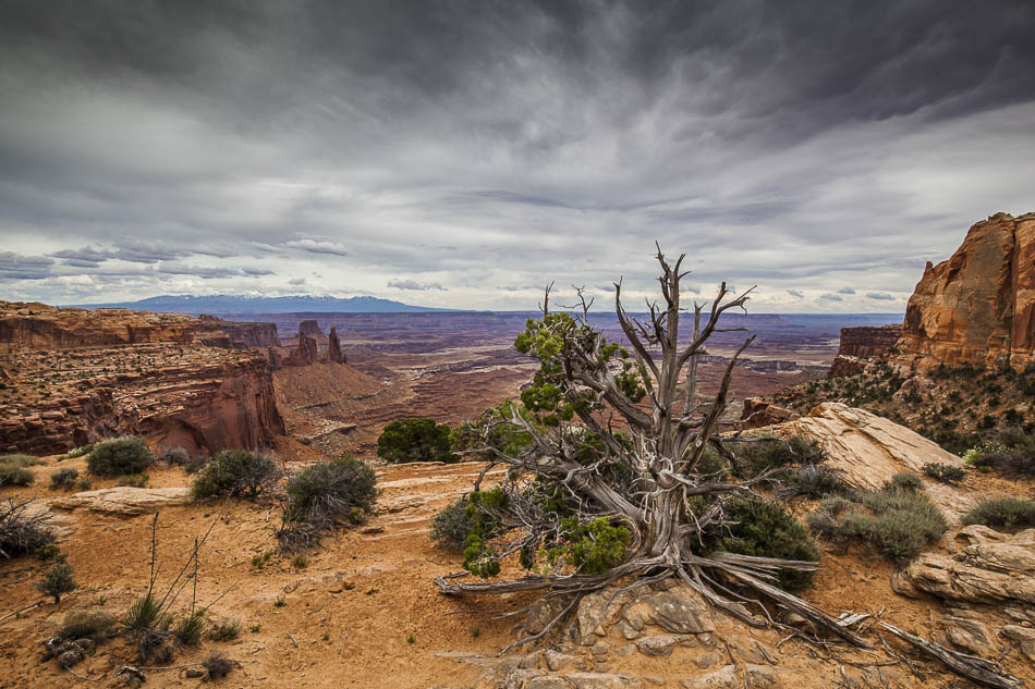 Canyonlands-Nationalpark Utah USA